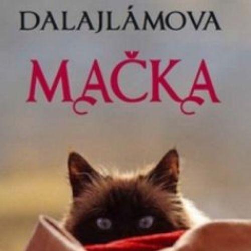 Dalajlámova mačka, David Michie