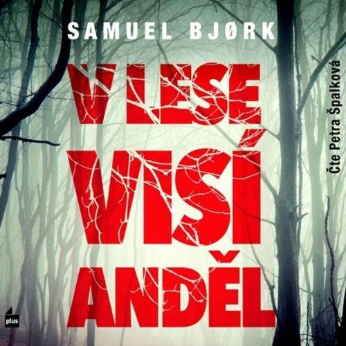 V lese visí anděl, Samuel Bjork