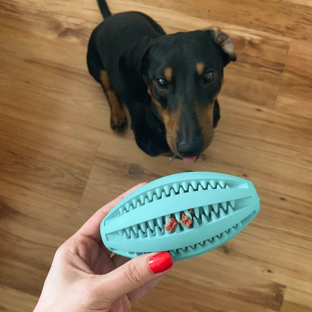 Trixie Dentafun Hračka pes rugby lopta s mätou - test