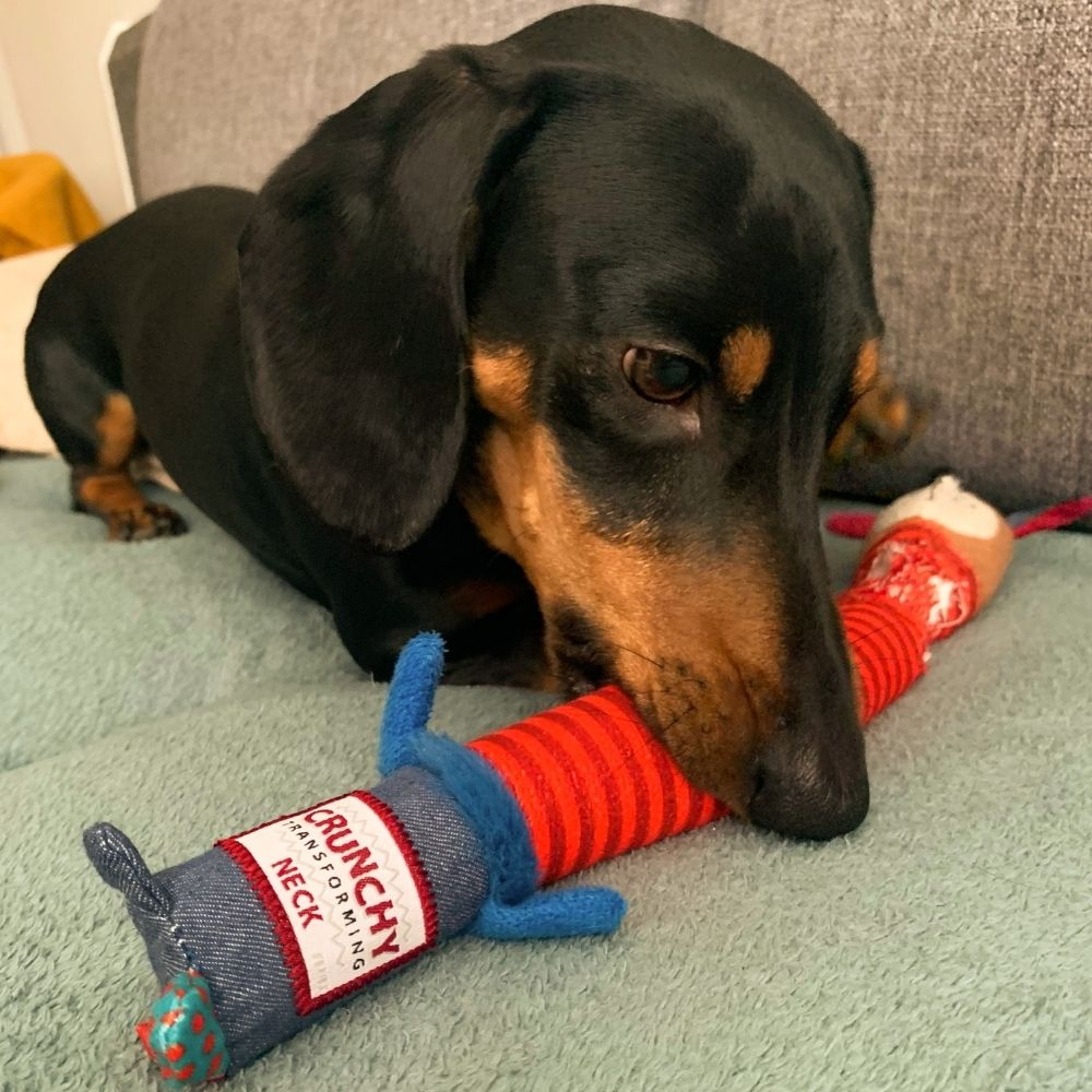 GiGwi Plush Friendz pes S chrumkavý krk - test