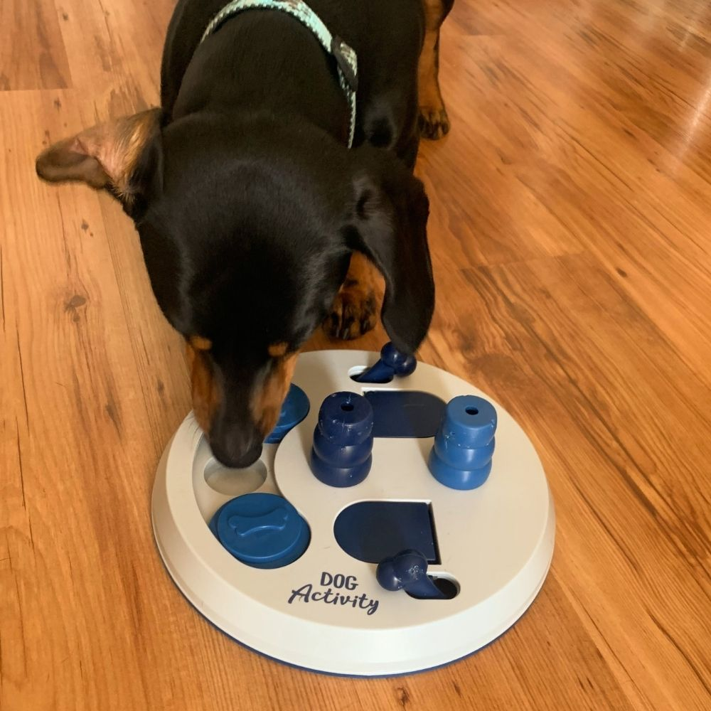 Trixie Dog Activity Flip Board - test