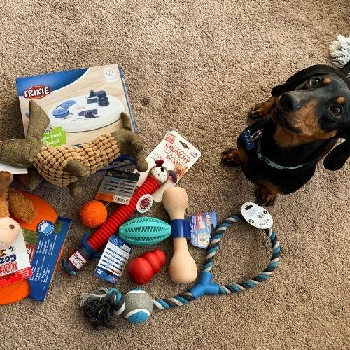 Hračky pre psov - test